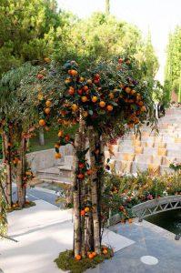 ceremonia villa Padierna